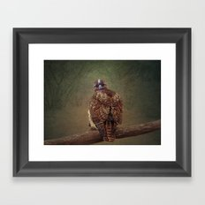 Young Red Tail Hawk Framed Art Print