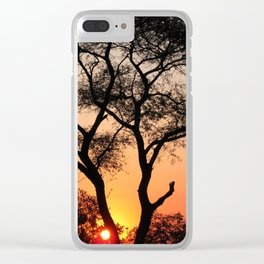 Sunset in Africa Clear iPhone Case