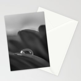 Alone is a black and white photograph water drop on flower Stationery Cards