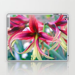Flowers of Pink Laptop & iPad Skin