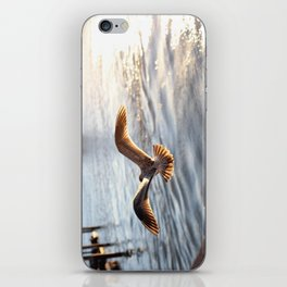 Bird in Flight iPhone Skin