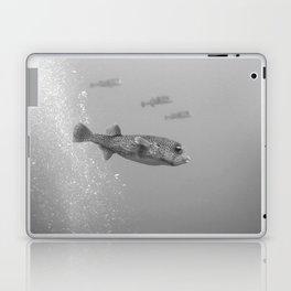 Pufferfish team Laptop & iPad Skin
