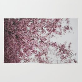 Cherry Blossoms  Rug
