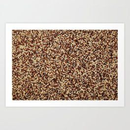 Mixed quinoa Art Print