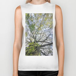 Centenary oak with the trunk covered in moss and green plants Biker Tank