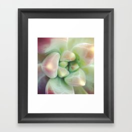 Plant perfection Framed Art Print