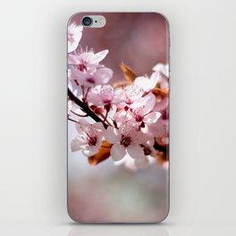 Cherryblossom iPhone Skin