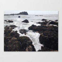 Yaquina Head Canvas Print