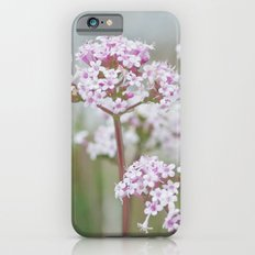 Tender Spring Flowers iPhone 6s Slim Case