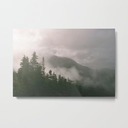 Foggy Forest (Squamish, British Columbia, Canada) Metal Print