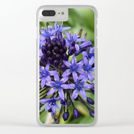 Portuguese Squill Flower Clear iPhone Case