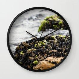 Windswept Shore Wall Clock