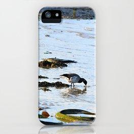 Trash Bird, #7 iPhone Case