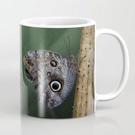 Giant Owl Butterfly On Screw Pine Coffee Mug
