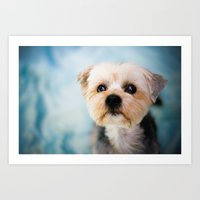 puppy Art Prints featuring Puppy by jr_moon