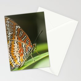 Macro photograph of a lacewing butterfly taken in Malaysia. Stationery Cards