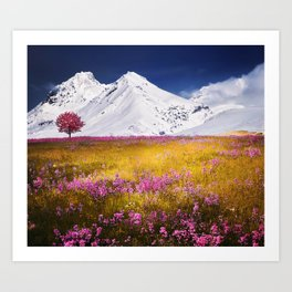 When Flowers Bloom And The Mountains Froze Art Print