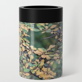 New York Nature V Can Cooler