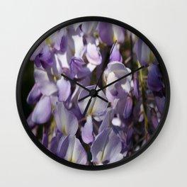 Close Up Of Lavender Wisteria Blossom Wall Clock