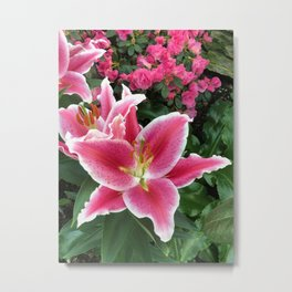 Stargazer Lily Magic Metal Print
