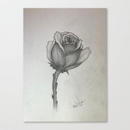 Osirian Rose Canvas Print