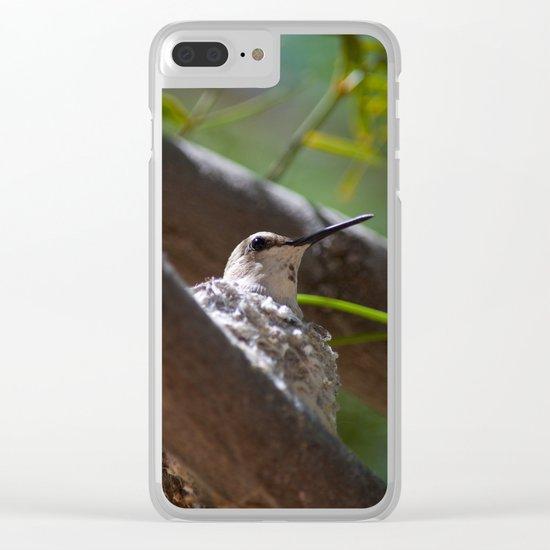 Hummingbird Momma Clear iPhone Case