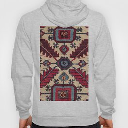 Red Feathers Lake Urmia 19th Century Authentic Colorful Blue Green Vintage Patterns Hoody
