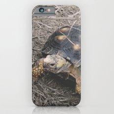 Explore Slim Case iPhone 6s