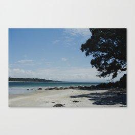 exploring beaches at mt maunganui Canvas Print