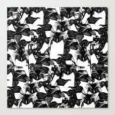 just penguins black white Canvas Print