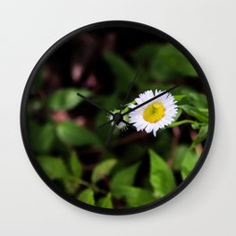 Daisy in the Forest Wall Clock