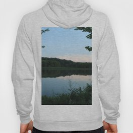 A window into nature Hoody