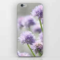 I dreamt of fragrant gardens iPhone & iPod Skin