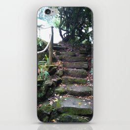 Eroded Steps to Adventure iPhone Skin