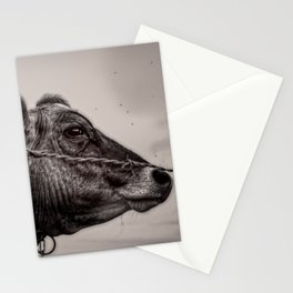 Cows Great Escape Stationery Cards