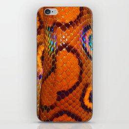 Rainbow Boa iPhone Skin