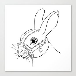BDSM Rabbit Canvas Print