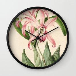 Flower laelia autumnalis3 Wall Clock