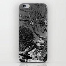 Desolance iPhone & iPod Skin