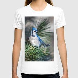 Bright BlueJay T-shirt
