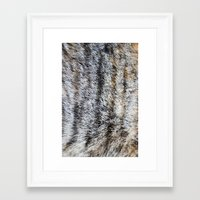 furry Framed Art Prints featuring Furry by Courtney Spencer