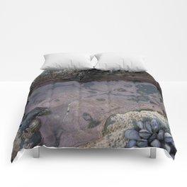 Pink Ocean Rock Pool with Mussels Comforters