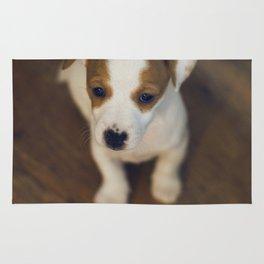 Little puppy dog Rug