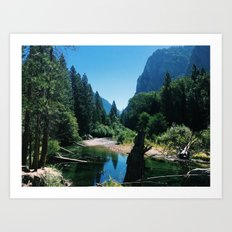Zumwalt Meadow Trail Art Print