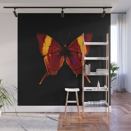 Butterfly - Vibrant Glow - Orange Brown Yellow Black Wall Mural