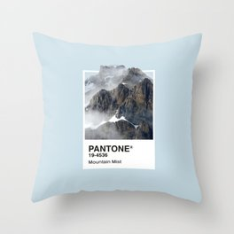 Pantone Series – Mountain Mist Throw Pillow