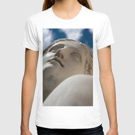 "the ""Venus from... Berlin"" T-shirt"