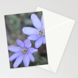 anemones Stationery Cards