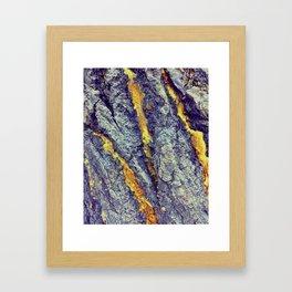 Golden Sap Framed Art Print