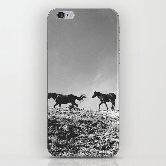 Pryor Mountain Wild Mustangs iPhone Skin